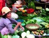 'Bonding science and policy to accelerate food systems transformation' - In support of the United Nations Food Systems Summit 2021 - Thursday, February 4, 2021 - On line event