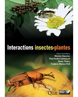 Interactions insectes plantes