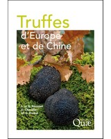 Truffes d�Europe et de Chine